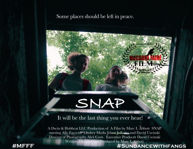 snap-festival-movie-poster
